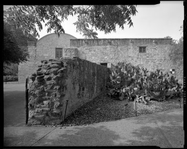 TX-318-A-14 View in courtyard with north facade